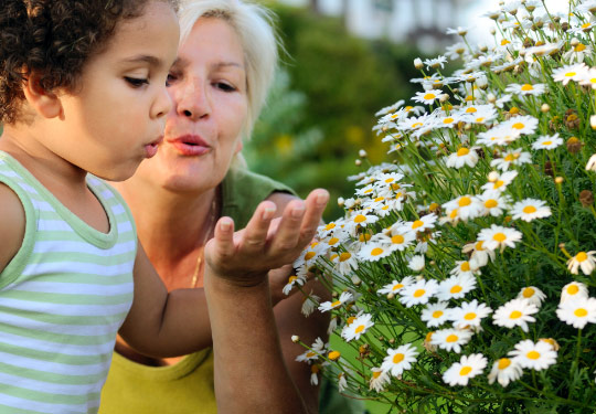 a lady and a little girl looking at flowers
