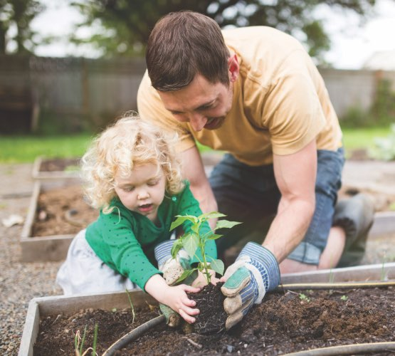 Man putting plant in soil with toddler